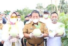 Gubernur Lampung Arinal Djunaidi 218x150 - Home